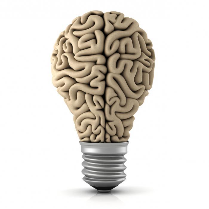 Qué es la glándula pituitaria? ¿Dónde está la glándula pituitaria?