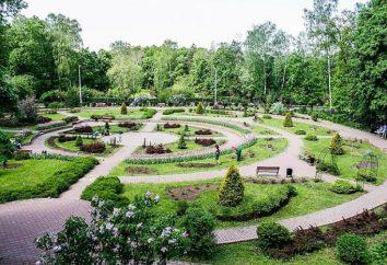Vêm em Sokolniki (parque)! Driving Park será o seu guia confiável