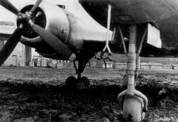 "Aeroporto ""Severny"" (Novosibirsk): in memoria dell'antica gloria"