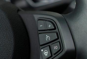 ¿Cuál es el control de velocidad en su coche? La historia del dispositivo, y los beneficios
