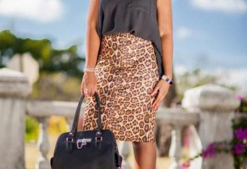 De lo que debe llevar falda de leopardo? Blusa, zapatos, accesorios