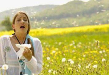 Alergie w sierpniu: przyczyny i leczenie