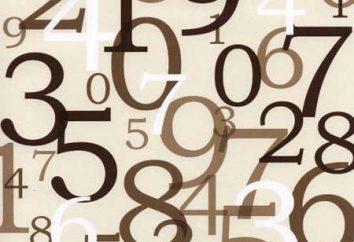 A magia dos números, numerologia e numerologia