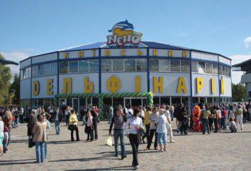 Odwiedzić delfinarium w Kijowie