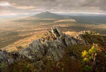 """Reserve """"Basegi"""" na região de Perm: Descrição, animais"""