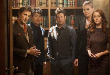 """Serii """"Bibliotekarze"""": aktorzy, fabuła"""