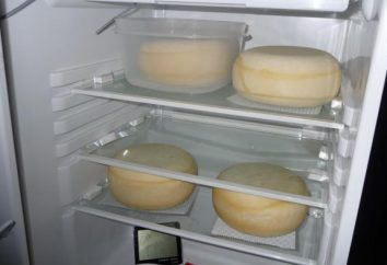 Wie die länger den Käse im Kühlschrank sparen? Wie vielen Käse im Kühlschrank aufbewahrt?