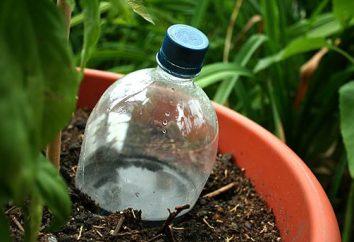 Jak zbudować nawadniania butelek plastikowych przez siebie?