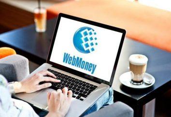 ¿Cómo puedo obtener un certificado personal Webmoney: guía paso a paso