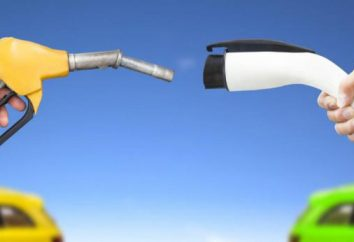 Entro il 2040, la Francia ha vietato la vendita di veicoli a benzina e diesel