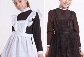 stili alla moda di divisa scolastica per le ragazze con un grembiule. Stili di uniforme della scuola per ragazze pieni (Foto)