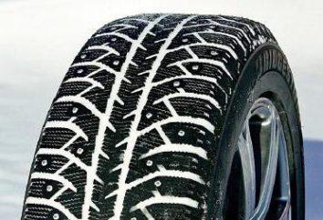 """""""Bridgestone Ice Cruiser 7000"""": avis. Pneus Bridgestone Ice Cruiser 7000 prix"""