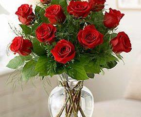 Finché si mantiene le rose in un vaso? Le vie principali