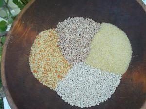 Jaki rodzaj zboża takie kuskus? Korzyści i szkody zbóż