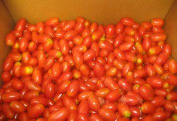 Come chiudere per i pomodori invernali per l'uva?