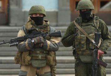 L'âge des réservistes dans l'armée russe. Quel est l'âge des réservistes en Russie?