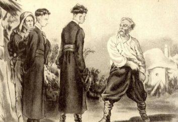 "Caractéristiques Ostap (Nikolai Gogol, ""Tarass Boulba""). Caractéristiques comparées de Ostap et Andriy"