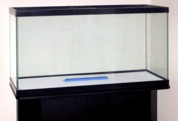 Iniciando o aquário. Instruções passo a passo e as características do processo