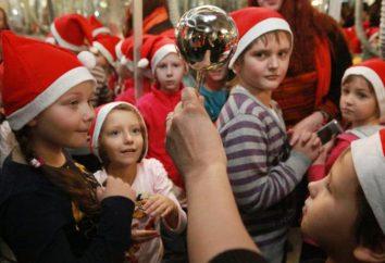 Museo juguetes de Navidad en Sokolniki: opiniones, descripciones, especificaciones y comentarios
