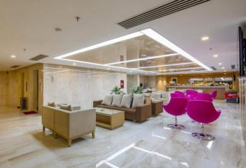 Albergo Dendro Gold Hotel 4 *, Vietnam, Nha Trang: recensioni, descrizioni e recensioni