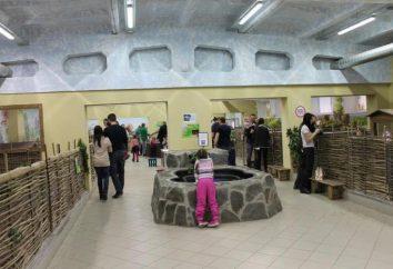 Kontakt Murmańsk Zoo: opis, ciekawostki i opinie