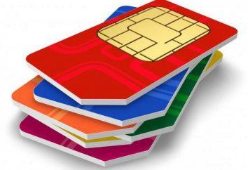 Erreur lors de l'enregistrement de la carte SIM: ce qu'il faut faire et comment y remédier?