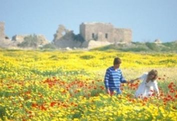 caratteristiche naturali, il clima. La Grecia è in attesa di turisti in qualsiasi periodo dell'anno