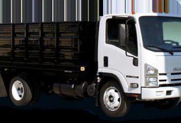 véhicules aériens: la livraison de marchandises lourdes, volumineuses ou compact le plus tôt possible