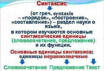 lengua rusa: la sintaxis como parte de la gramática