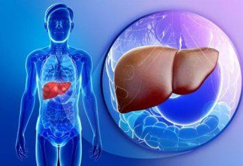 Nicht-alkoholische Fettlebererkrankung (NAFLD): Ursachen, Anzeichen, Symptome und Behandlung