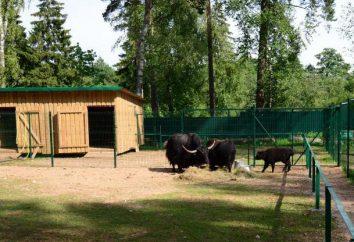 Miasto Kostroma zoo i zoo w Kostroma: jaka jest różnica? Opis, zdjęcia i opinie