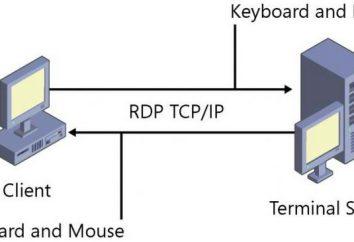 Porta RDP: modificare il valore predefinito ei passaggi di installazione di base