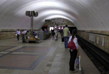 "Metro ""Timiryazevskaya"" su una mappa di Mosca"