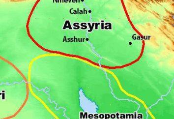 Asirios – ¿quiénes son? Cultura, religión, historia