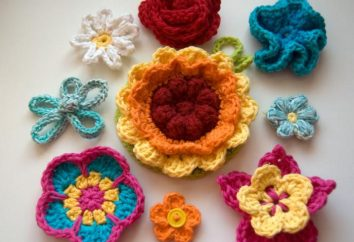 Wie eine Blume, gestrickt Häkeln machen? Schema