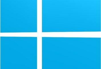"""""""Windose 8"""": opinie użytkowników i programistów. Plusy i minusy Windows 8"""