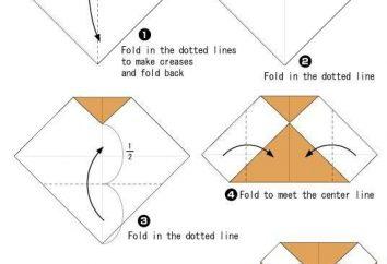 Workshop: wie eine Origami Eule machen