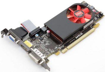 AMD Radeon HD 6450: przegląd karty graficznej