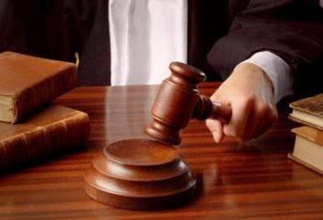 Art. 397 kodeksu postępowania karnego. Kwestie do rozważenia przez sąd wykonania kary