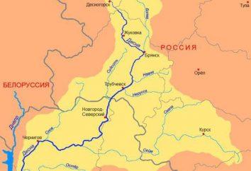 Desna (fiume) – il più grande affluente del Dnieper