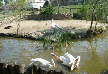 "Park ""Sunny Island"" (Krasnodar): Fahrten, ein Safaripark, Preis und Adresse"