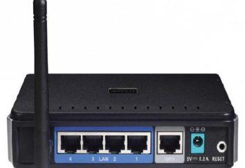 D-Link DIR-300: konfigurowanie routera. D-Link DIR-300 – podręcznik użytkownika