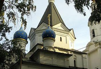 Chiesa dell 'Assunzione della Beata Vergine. Tempio di Vishnyaky: la sua storia e il calendario dei servizi