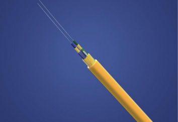 Kabel optyczny jednomodowy jest technologią, za którą przyszłość