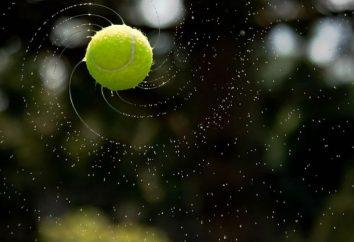 Rzuca piłkę. Technika rzuca piłkę. Rzucając piłkę na odległość