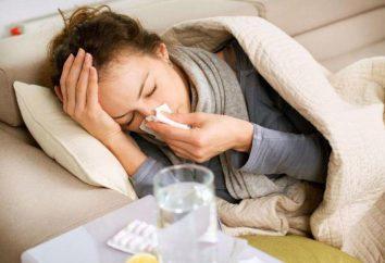 Die Folgen der Influenza in der frühen Schwangerschaft