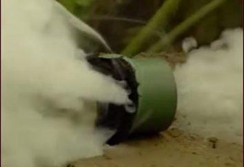 Siarkowy sprawdzania – skutecznym sposobem zwalczania szkodników
