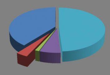 Os custos fixos – esta é … A estrutura do custo da empresa. Custos e sua classificação