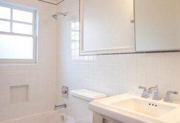 ¿Cuál es el techo en el baño mejor cosa que hacer?