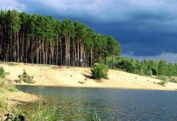 Lagos Andreevsky (Tyumen) – descanse nos maiores reservatórios do Norte